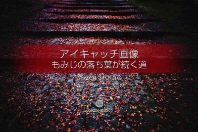 もみじの落ち葉が続く道(紅葉)ブログ記事無料アイキャッチ画像