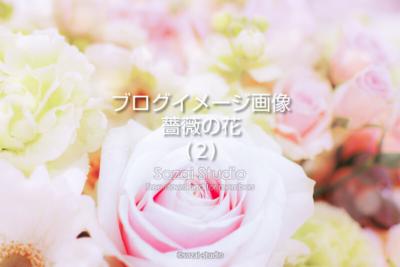ブログ記事用無料イメージ画像:花シリーズ薔薇の花(2)