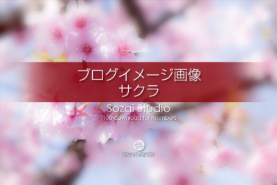 ブログ記事無料アイキャッチ画像:桜のイメージ画像(2)4素材