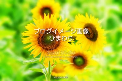 ブログ記事用無料イメージ画像:夏の景色ひまわり 4素材