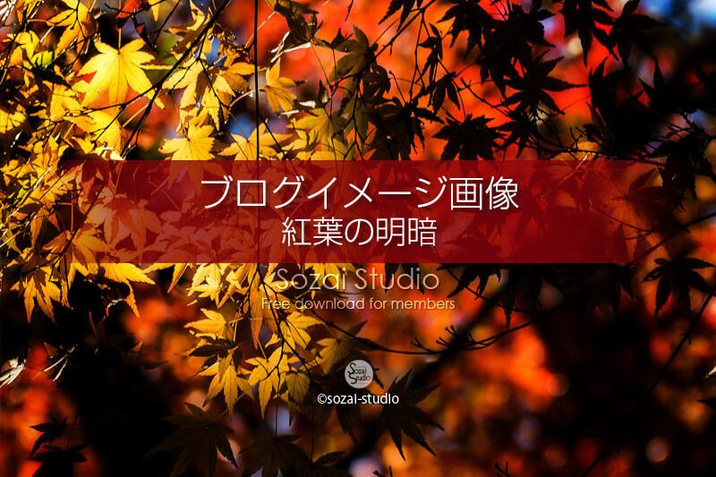 ブログ記事用無料イメージ画像:紅葉のある風景 明と暗4素材|写真を楽しむブログ