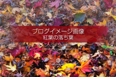 ブログ記事無料アイキャッチ画像:色とりどり紅葉の落ち葉4素材