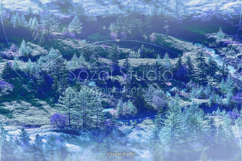ブログ記事用無料イメージ画像:森林シリーズ 芳ヶ平湿原-01|素材スタジオ