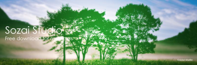 ブログヘッダー用無料画像:森林シリーズ木のシルエット|素材スタジオ