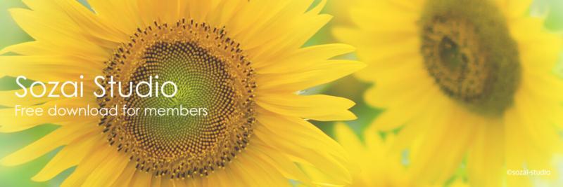 ブログヘッダー用無料画像:夏の代表格 ひまわりの花 3素材