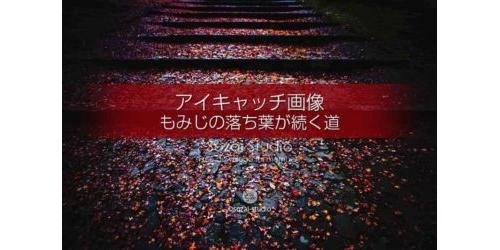 もみじの落ち葉が続く道:ブログ記事用画像