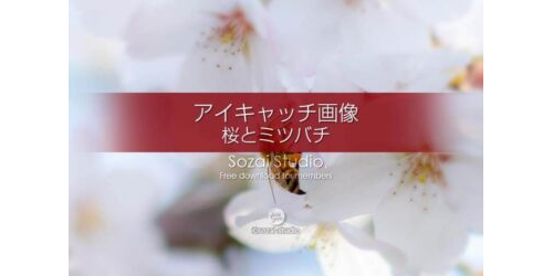 桜の花びら画像〜桜とミツバチ:ブログ記事無料アイキャッチ画像