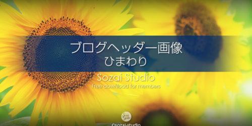 夏の代表格 ひまわりの花:ブログヘッダー用画像