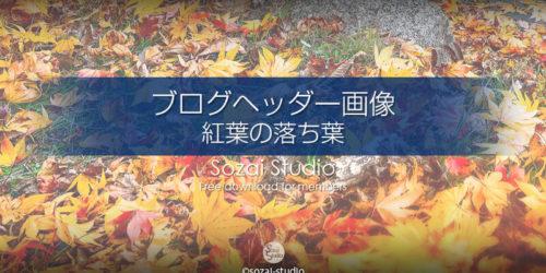 秋のイメージ 紅葉の落ち葉 :ブログヘッダー用画像