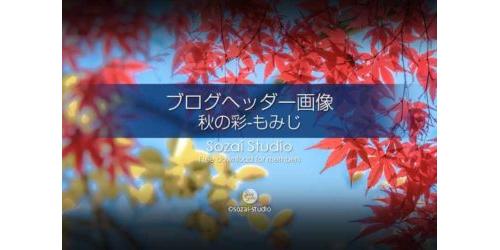秋の彩 もみじ:ブログヘッダー画像
