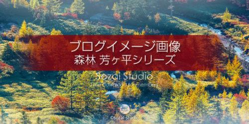 森林シリーズ 芳ヶ平湿原-01