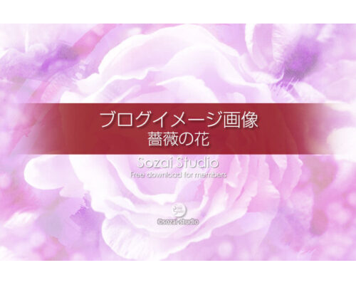 ブログ記事用無料イメージ画像:花シリーズ薔薇の花(1)4素材