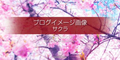春のシリーズ桜の花(2):ブログ記事用画像