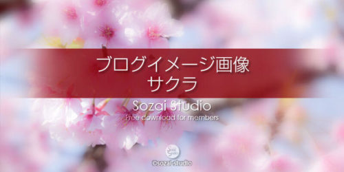 桜のイメージ画像(2):ブログ記事用画像