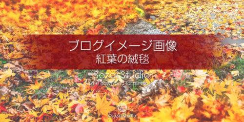 秋の風景紅葉の絨毯:ブログ記事用画像