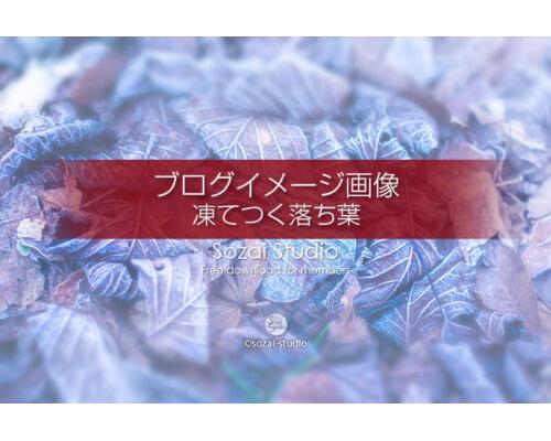 ブログ記事用無料イメージ画像:冬景色 凍てつく落ち葉 4素材