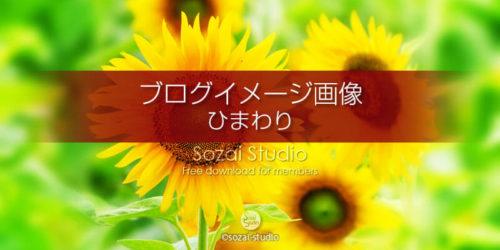 夏の景色ひまわり:ブログ記事用画像