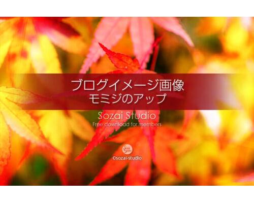 ブログ記事用無料イメージ画像:モミジの葉 紅葉アップ 4素材 写真を楽しむブログ