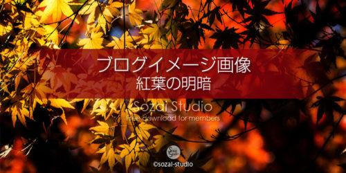 紅葉のある風景 明と暗:ブログ記事用画像