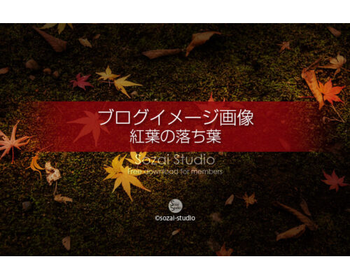 ブログ記事用無料イメージ画像:紅葉の落ち葉 侘び寂び4素材|写真んを楽しむブログ