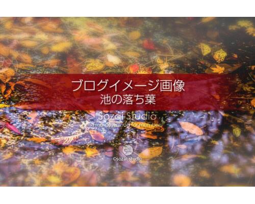 ブログ記事無料アイキャッチ画像:紅葉 池の中の落ち葉4素材 写真を楽しむブログ 写真ブログ素材