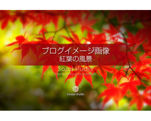 ブログ記事無料アイキャッチ画像:紅葉 秋定番の構図4素材