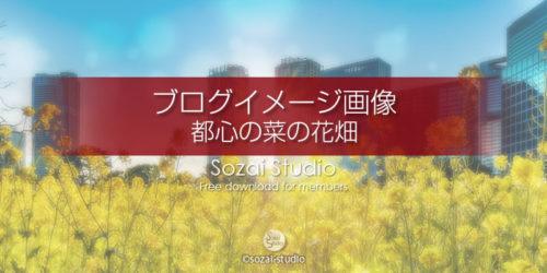都心の菜の花畑 浜離宮:ブログ記事用画像