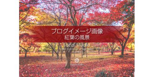 紅葉の風景 カエデ園:ブログ記事用画像